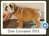 Don Giovanni 003